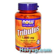 【NOW 健而婷】Tribulus 刺蒺藜提取物